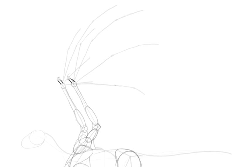 dragon wing finger